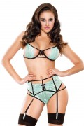 Tease Lace Cutout Bra & Garter Set One Size